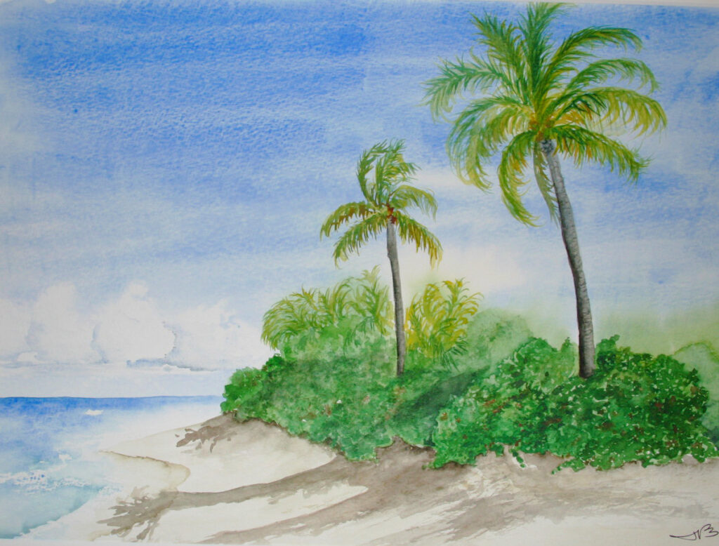 La Chata Beach, Vieques